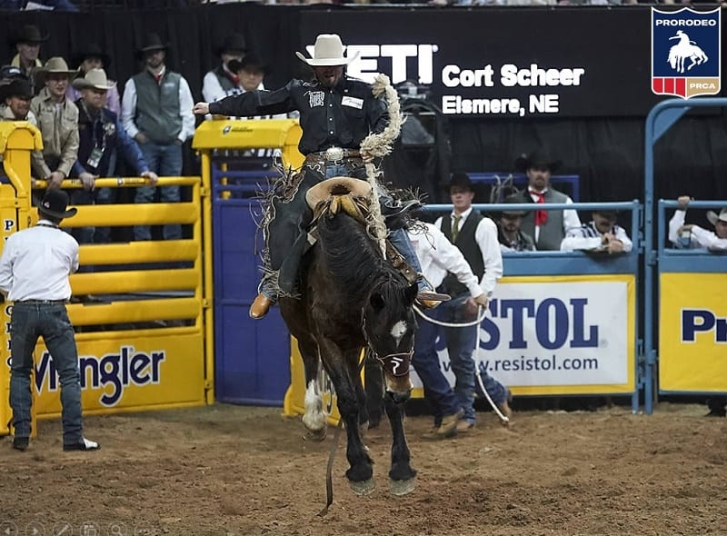 saddle bronc rider Cort Scheer at WNFR 2018