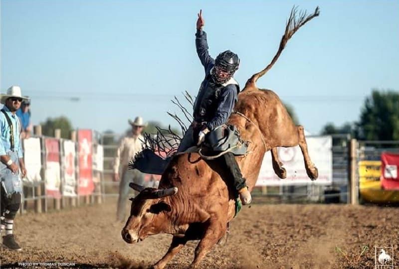 Bull rider Ruger Piva hopes ProRodeo